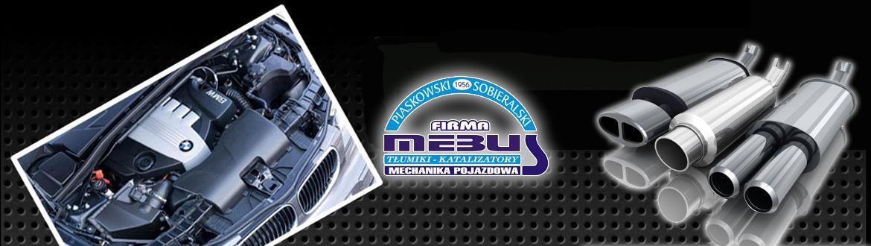 logotyp baner